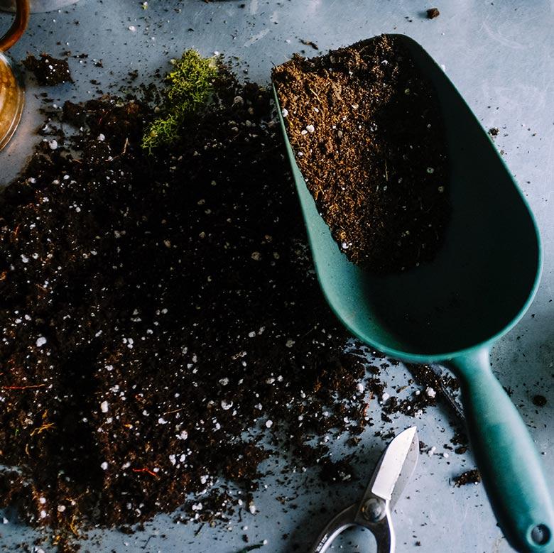 dirt and gardening tool